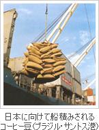 日本に向けて船積みされるコーヒー豆(ブラジル・サントス港)