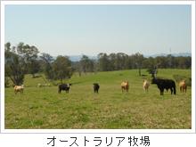 オーストラリア牧場